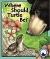 where should turtle be_COVER_Heather playing
